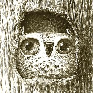 Postcard owl sitting in a tree hollow