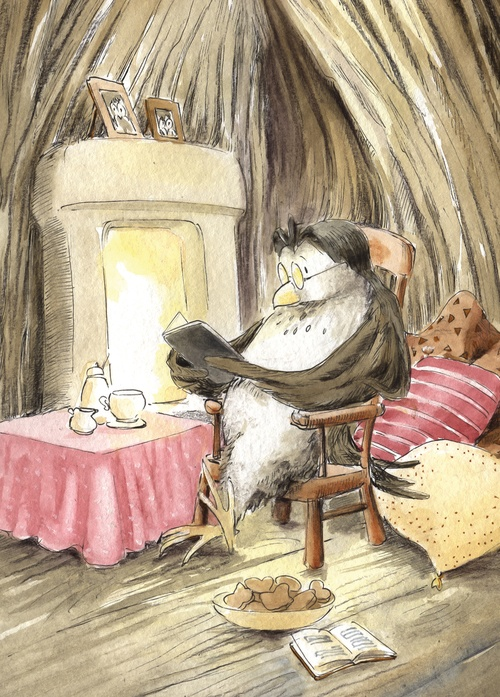 owl the reader - picture 1