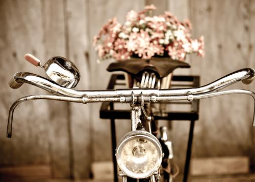 vintage bicycle - picture 1