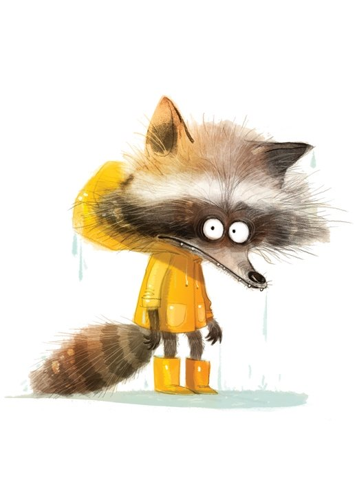raccoon in yellow raincoat - picture 1