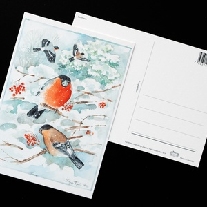 bullfinches - picture 2
