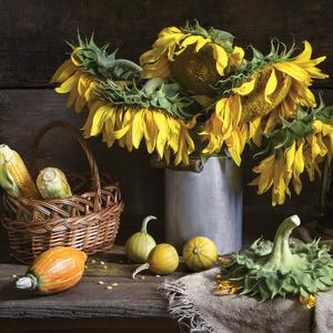Postcard still life with sunflowers