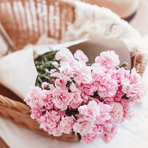 Postcard clove pinks in basket