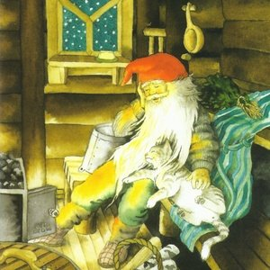 Collection christmas - sleeping gnome with cat