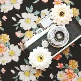 vintage camera and flowers - picture 1