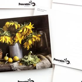 still life with sunflowers - picture 2