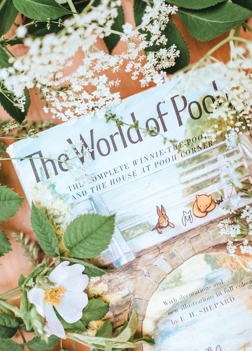 the world of pooh - picture 1