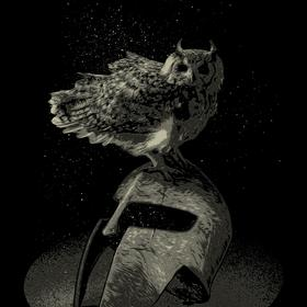 owl knight - picture 1