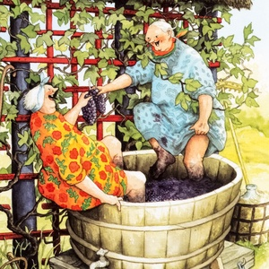 Collection old ladies - grape harvest