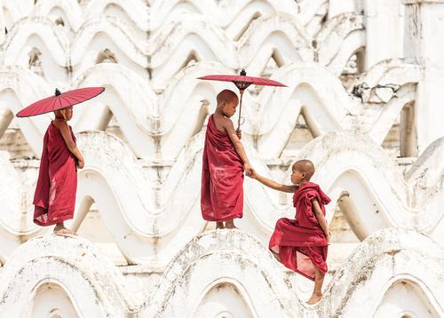 young monks of myanmar - picture 1