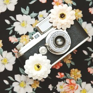 Postcard vintage camera and flowers