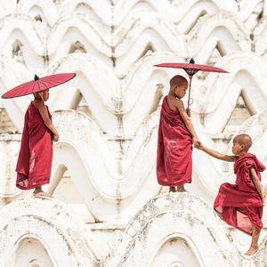 Postcard young monks of myanmar