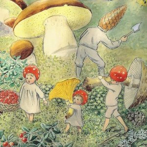 Collection children of the forest - mushrooming