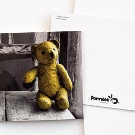 vintage teddy bear - picture 2