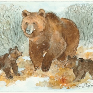 Collection ingvar björk's wild animals - she-bear with cubs