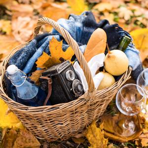 Postcard cozy autumn picnic