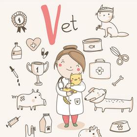 Collection cute alphabet profession - v - vet
