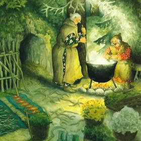Collection old ladies - cooking in cauldron