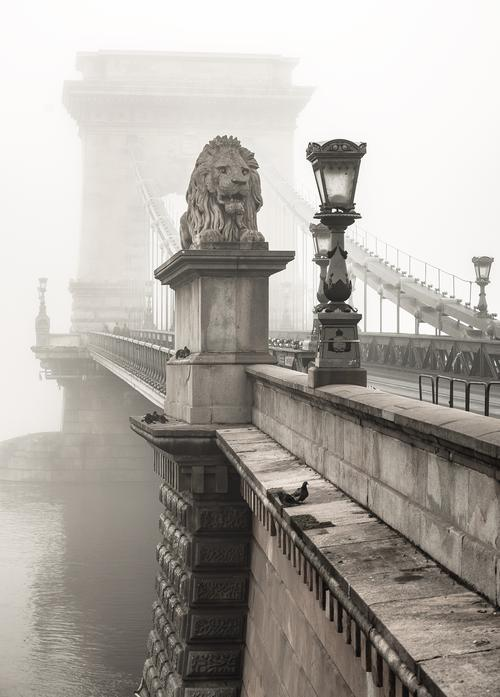 the széchenyi chain bridge in budapest - picture 1